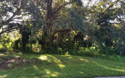 Lake Placid Residential Lots & Land For Sale: 917 Waterway Ter