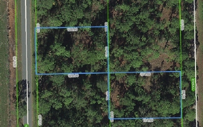 Lake Placid Residential Lots & Land For Sale: 641 Western Blvd