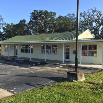 Commercial For Sale: 3952 S Us 27
