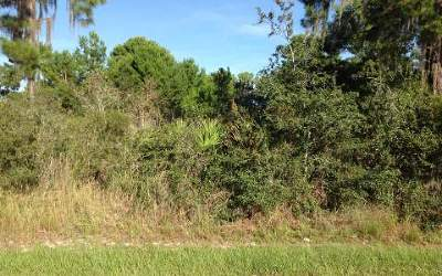 Residential Lots & Land For Sale: 3325 Manor Drive