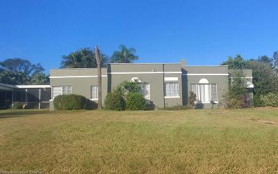 Avon Park Single Family Home For Sale: 2425 Lake Lillian Dr