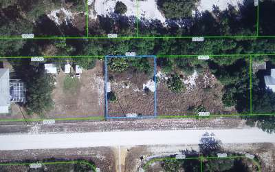 Avon Park Residential Lots & Land For Sale: 3052 W Downing Rd