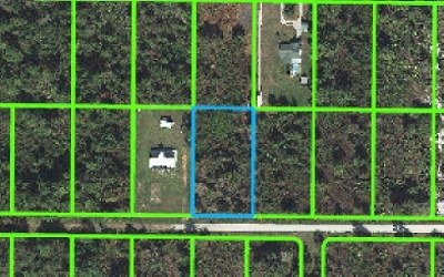 Avon Park Residential Lots & Land For Sale: 2826 W Tarkenton Rd