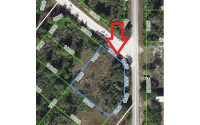 Lake Placid Residential Lots & Land For Sale: 216 Dewolf Ave