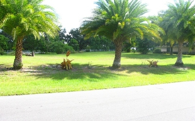 Lake Placid Residential Lots & Land For Sale: 12 Meadowlake Cir S
