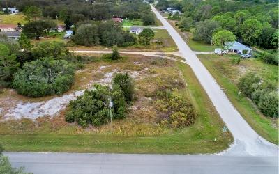 Avon Park Residential Lots & Land For Sale: 2999 N Buckingham Rd