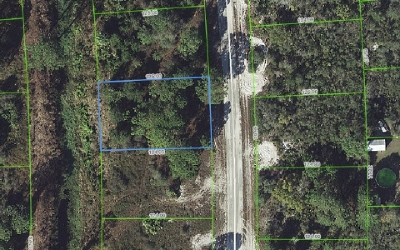 Lake Placid Residential Lots & Land For Sale: 245 E Canal Way NE