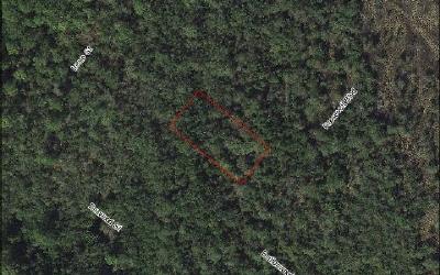 Lake Placid Residential Lots & Land For Sale: 804 Roosevelt Blvd