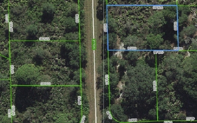 Lake Placid Residential Lots & Land For Sale: 103 Byron Street