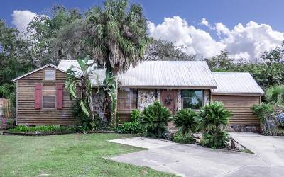 Sebring Single Family Home For Sale: 1320 Lakeview Drive