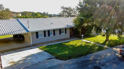 Sebring Single Family Home For Sale: 119 Earls Court