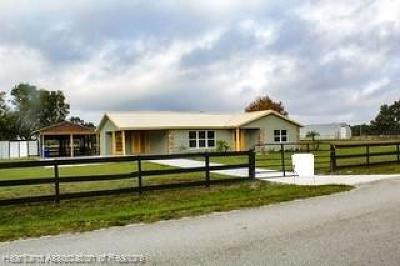 Lake Placid, Avon Park, Sebring, Lorida Single Family Home For Sale: 11955 Payne Road