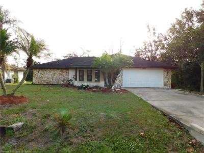 Avon Park, Lorida, Lake Placid, Sebring Single Family Home For Sale: 4520 Lake Haven Boulevard