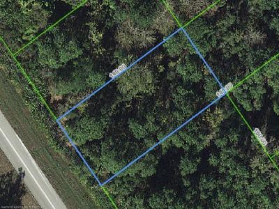 Lake Placid Residential Lots & Land For Sale: 537 Washington Boulevard