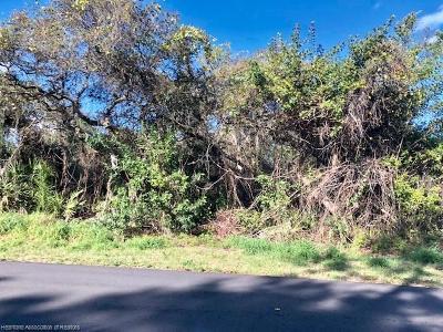 Sebring Residential Lots & Land For Sale: 301 Kite Avenue