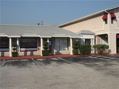 Sebring Commercial For Sale: 1570 Lakeview Drive #104/106