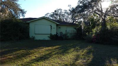 Lake Placid, Avon Park, Lorida, Sebring Single Family Home For Sale: 2420 Lakeview Drive