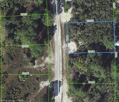 Lake Placid Residential Lots & Land For Sale: 244 E Canal Way NE