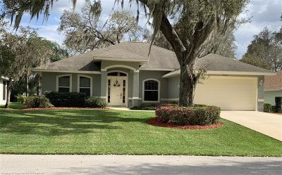 Sebring Single Family Home For Sale: 6010 Strafford Oaks Drive