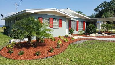 Avon Park, Lake Placid, Sebring Single Family Home For Sale: 405 Buddy Avenue