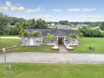 Sebring Single Family Home For Sale: 6054 Oak Leaf Circle
