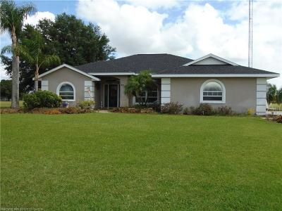 Sebring Single Family Home For Sale: 8717 Hampshire Drive