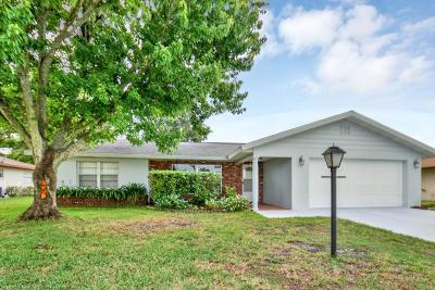 Sebring Single Family Home For Sale: 1802 Homestead Street