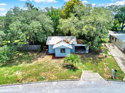 Sebring Single Family Home For Sale: 1041 Evanston Street