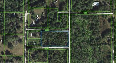 Avon Park Residential Lots & Land For Sale: 254 N Lone Bay Boulevard