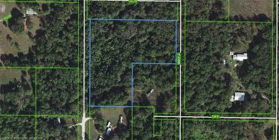 Avon Park Residential Lots & Land For Sale: 304 N Lone Bay Boulevard