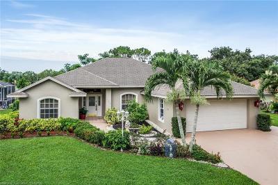 Avon Park, Lake Placid, Sebring Single Family Home For Sale: 136 Delta Avenue