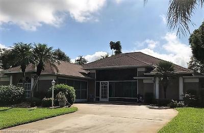 Avon Park, Lake Placid, Sebring Single Family Home For Sale: 809 Ryan Road
