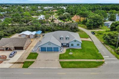 Sebring Single Family Home For Sale: 1300 Cougar Boulevard
