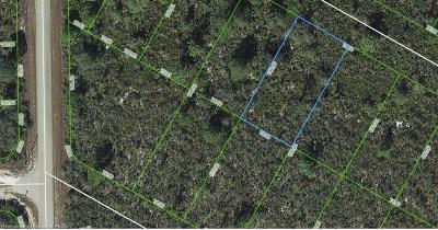 Lake Placid Residential Lots & Land For Sale: 1029 Freehill Avenue