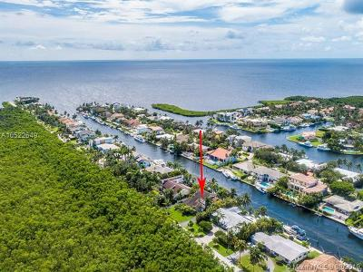 Coral Gables Single Family Home For Sale: 1000 Lugo Ave