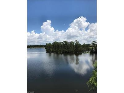 Estero Condo/Townhouse For Sale: 4640 Turnberry Lake Dr #302