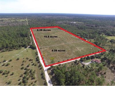 Collier County Residential Lots & Land For Sale: 1180 Keane Ave