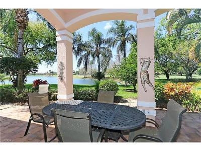Single Family Home For Sale: 941 Tierra Lago Way