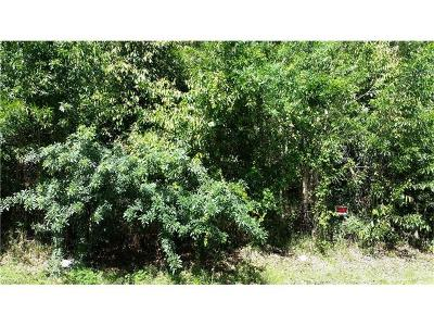 Naples Residential Lots & Land For Sale: Ladybug Ln