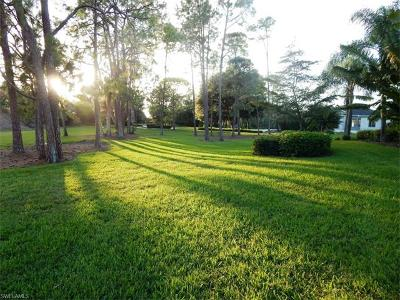 Collier County, Lee County Residential Lots & Land For Sale: 4148 Brynwood Dr