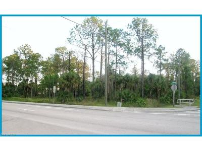Commercial Lots & Land For Sale: 100 Golden Gate Blvd