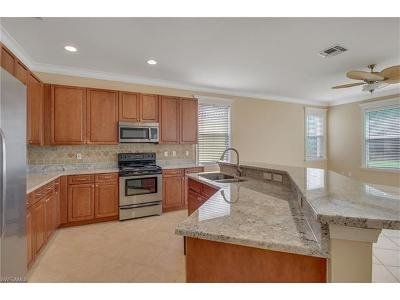 Saturnia Lakes Single Family Home Pending With Contingencies: 2346 Butterfly Palm Dr