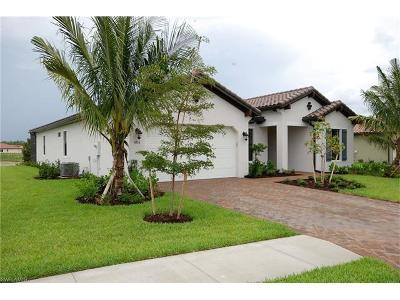 Raffia Preserve Single Family Home Pending With Contingencies: 4356 Raffia Palm Cir