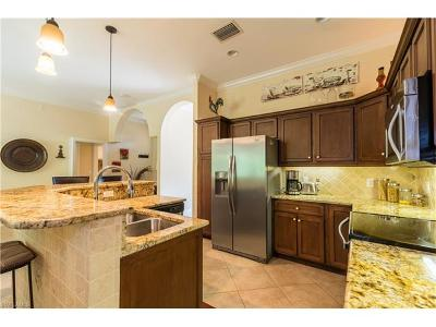 Marco Island Single Family Home For Sale: 255 Bald Eagle Dr