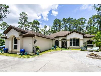 Oakes Estates Single Family Home For Sale: 6121 Golden Oaks Ln
