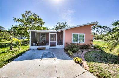 Bonita Springs Single Family Home For Sale: 27830 Michigan St