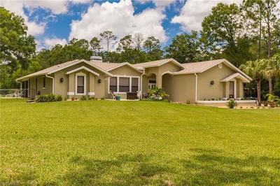 Fort Myers Single Family Home For Sale: 15830 Triple Crown Ct