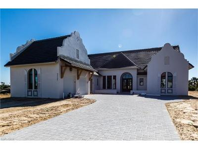 Marsh Cove Single Family Home For Sale: 3244 Tavolara Ln