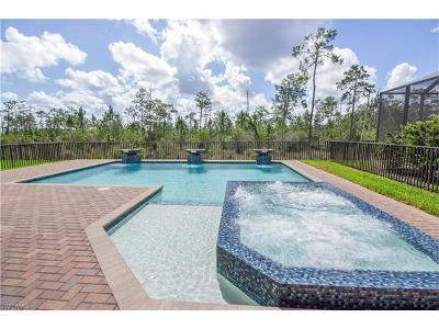 Riverstone Single Family Home For Sale: 2786 Cinnamon Bay Cir