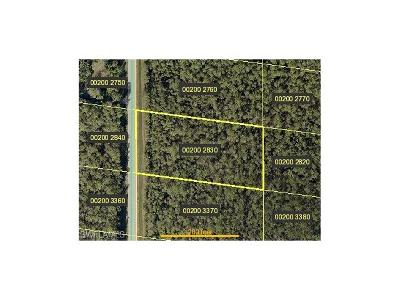 Bonita Springs Residential Lots & Land For Sale: 24299 Roger Dodger St